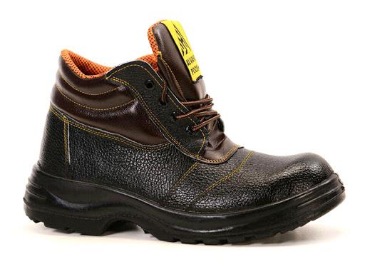 کفش استاندارد